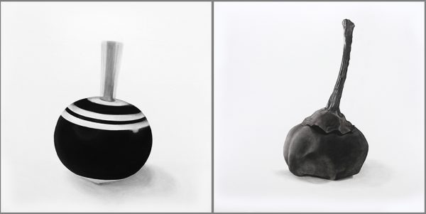 contemplations-series-spinning-top-and-seed-pod